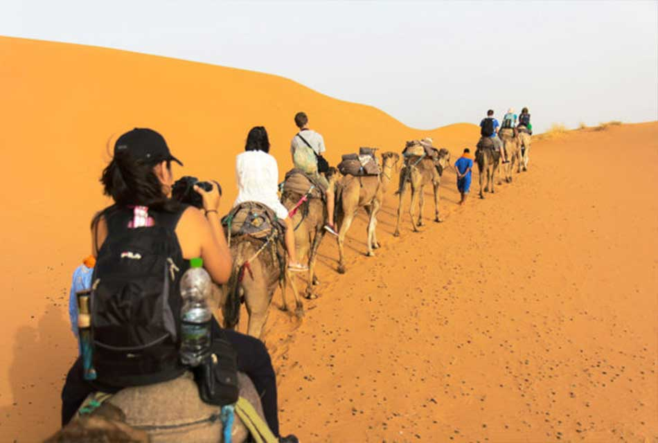 camel trekking in the desert morocco
