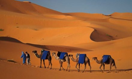 Merzouga: The Unknown Desert Pearl