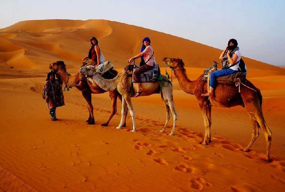 Camel trek in Sahara