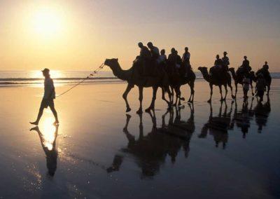essaouira-camel-trekking