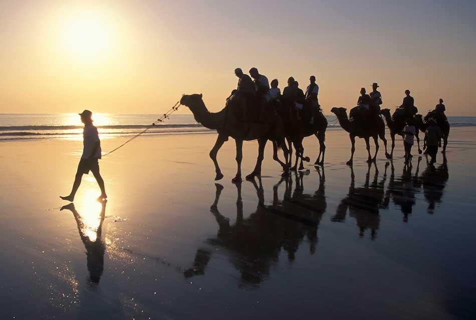 essaouira camel trekking