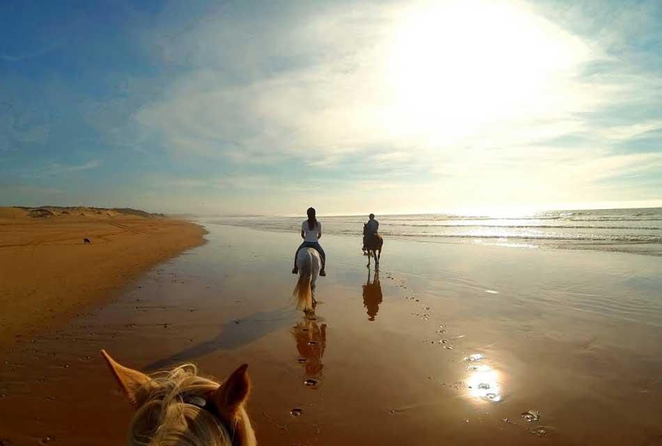 essaouira horse riding