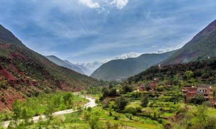 Ourika valley and waterfalls: the unforgettable journey