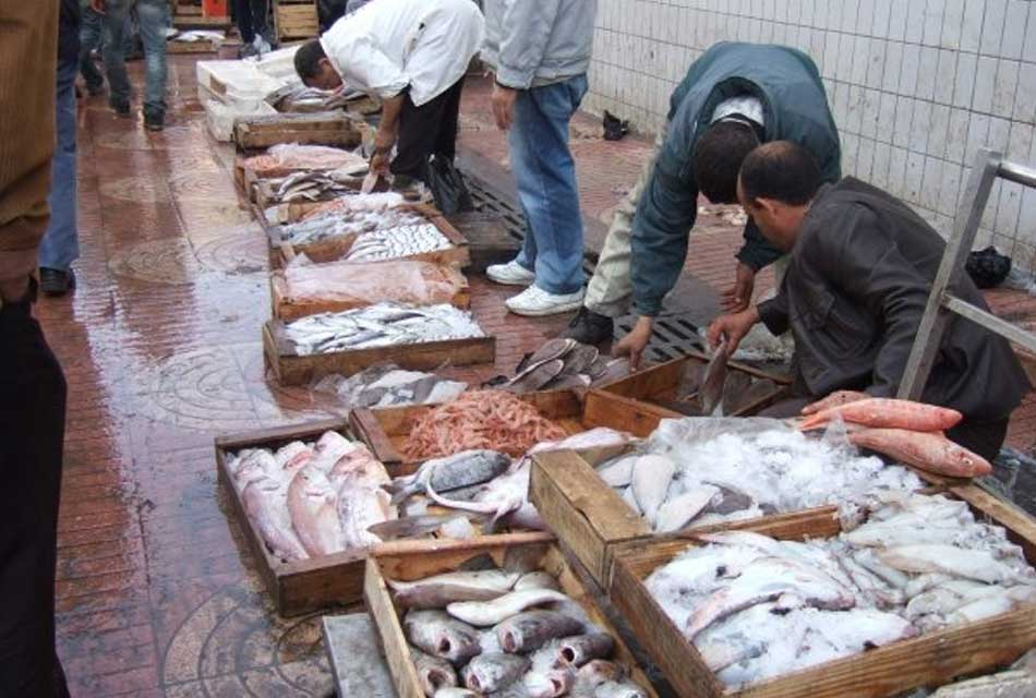 Agadir Fishing Port