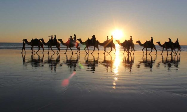 6 Days Fes Marrakech Camel Morocco tours