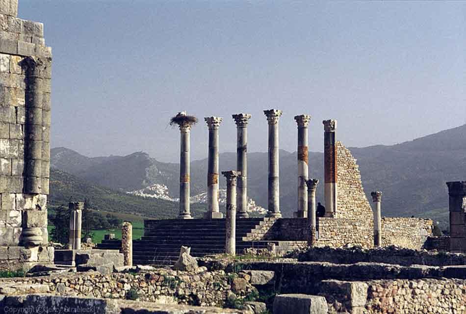 walili view