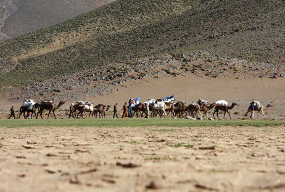 Nomad Ait Atta -Morocco Tribe