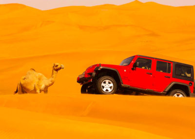 3 DAYS TOUR FROM MARRAKECH TO FES VIA MERZOUGA DESERT
