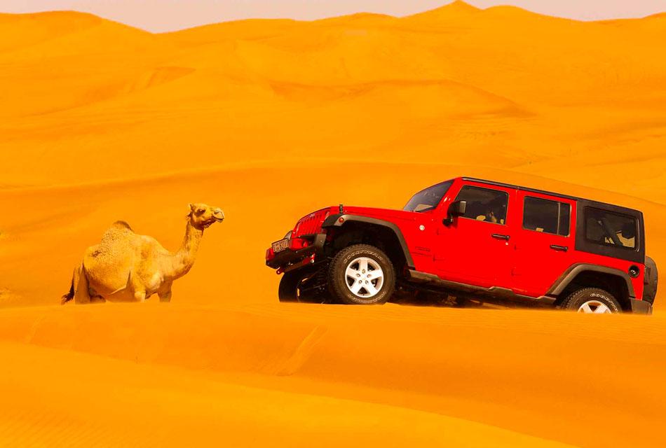 3 DAYS TOUR FROM MARRAKECH TO FES VIA MERZOUGA DESERT