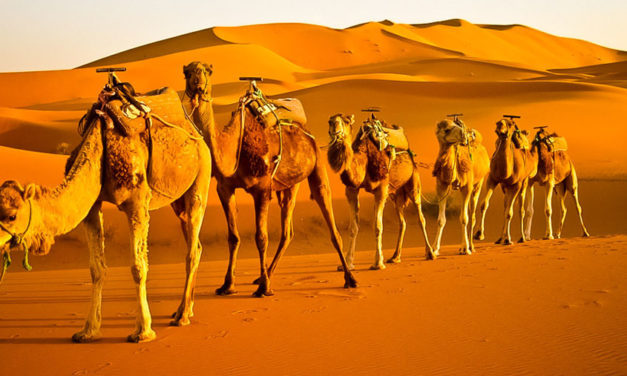 6 day tour from Casablanca to The Sahara Desert