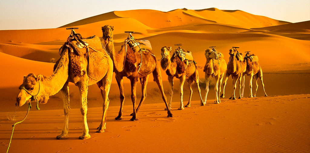 5 day Morocco desert tours from Fes to Merzouga