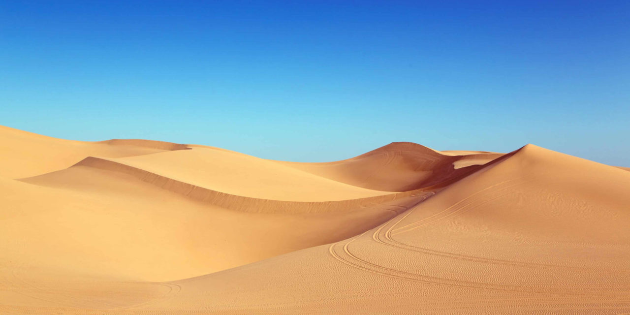 Top 10 morocco sahara desert Tours : Explore The Sahara Desert
