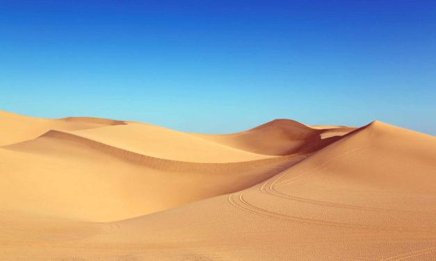 Top 10 morocco sahara desert Tours : Explore The Sahara Desert